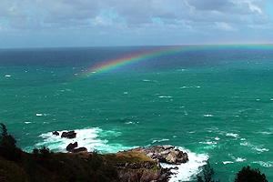 rainbow_skinmite